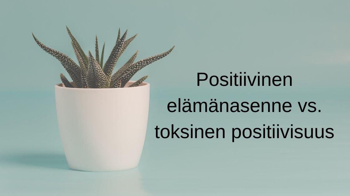 Positiivinen Elämänasenne